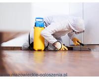 Dezynfekcja Dezynsekcja Ozonowanie O3 Zwalczanie Pluskwy domowej